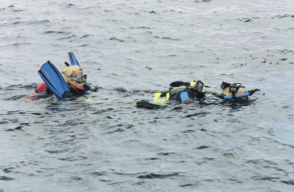 Tired Diver Tow